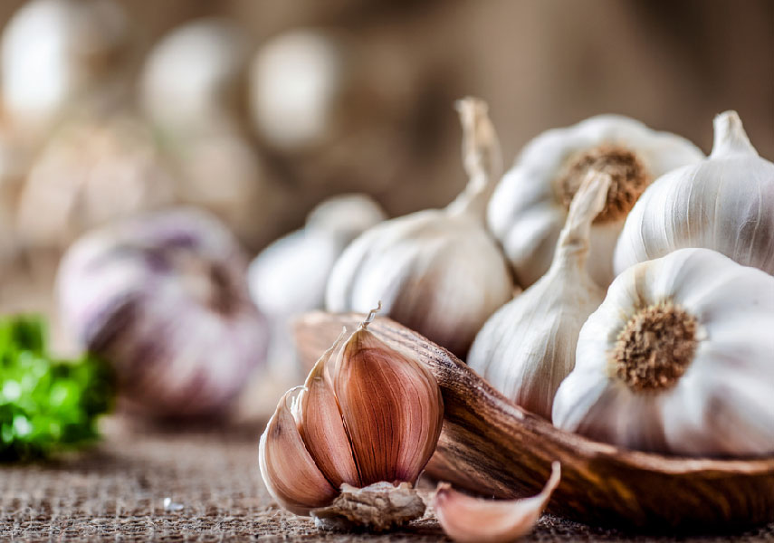 What Should We Know About Garlic?
